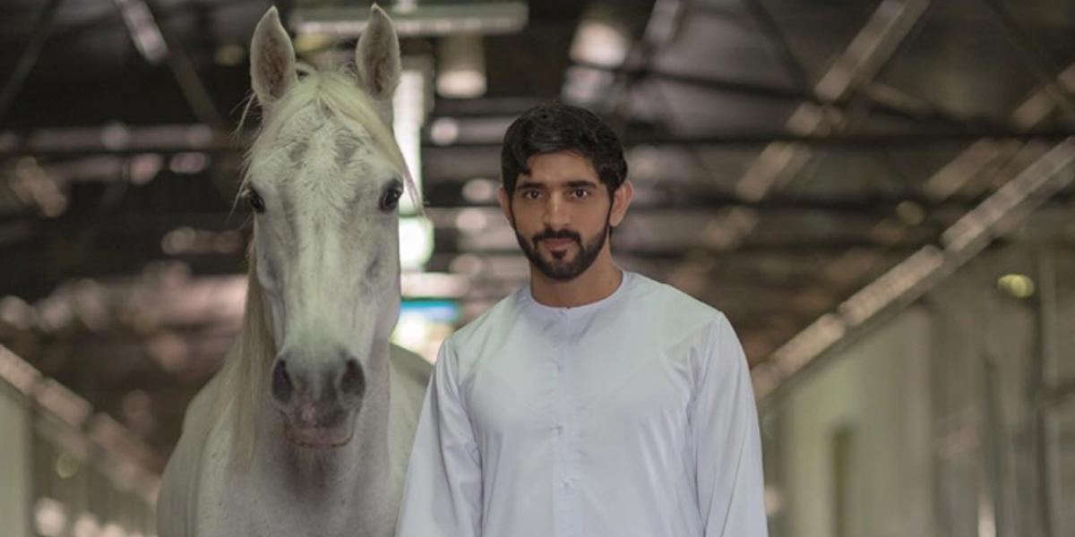 horses-social
