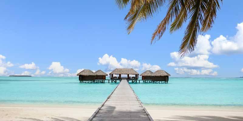 maldives-head