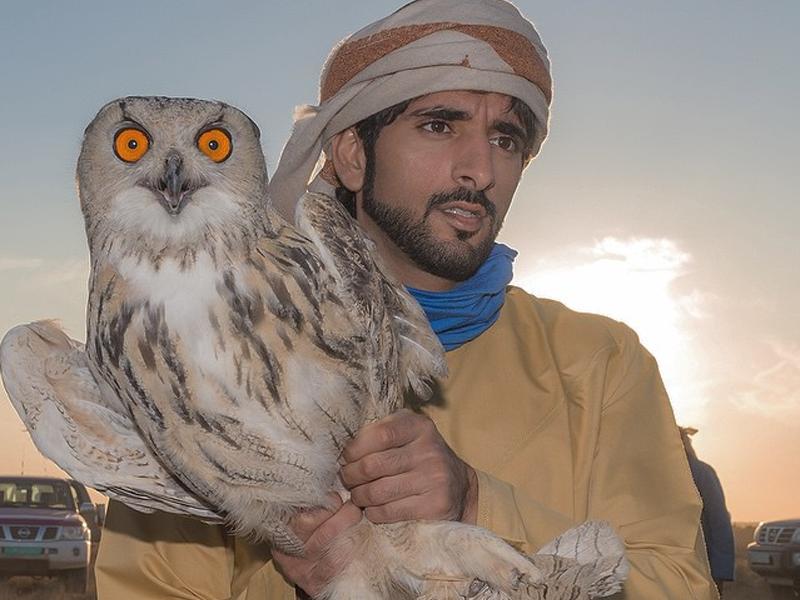 Sheikh Hamdan: The UAE's Favourite Animal Whisperer