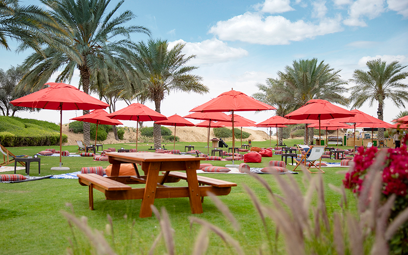 picnic brunch dubai weekend bab al shams